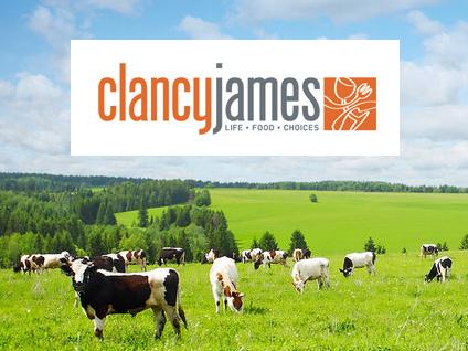 Gold Coast Web Design - Clancy James